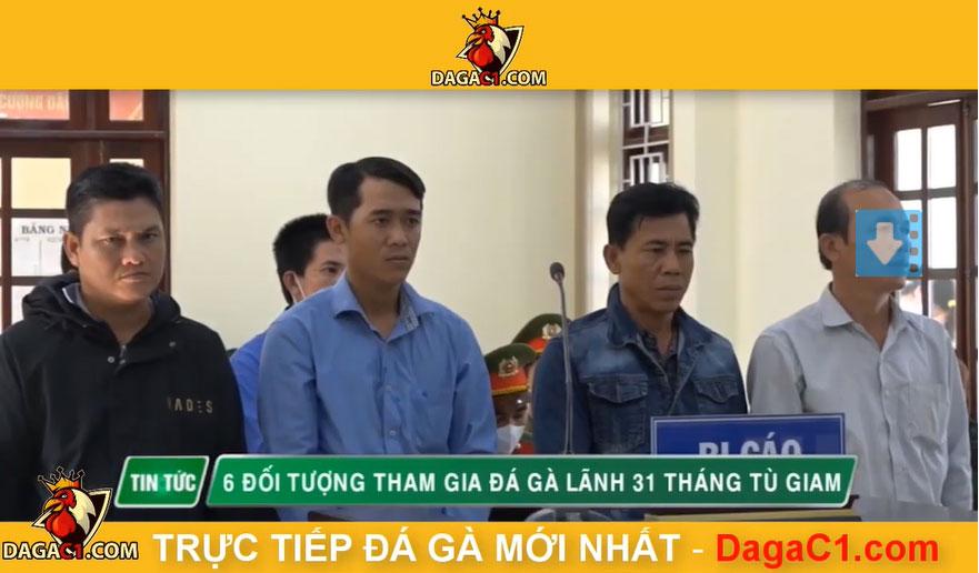 31 tháng tù giam - 6 đối tượng đá gà ăn tiền Hồng Ngự