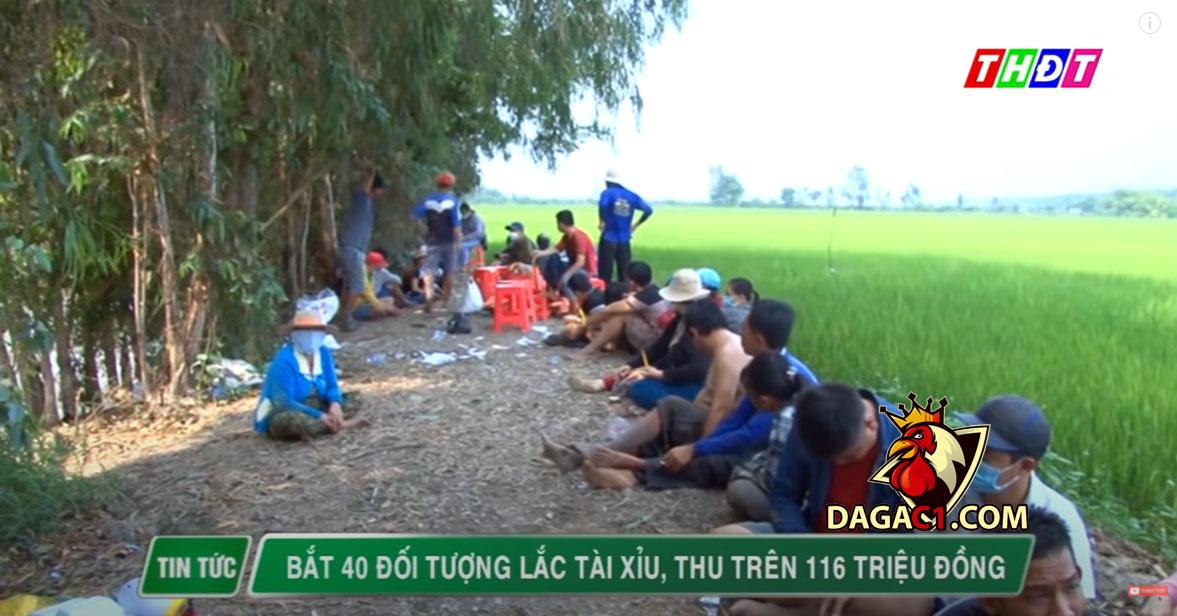 11-5-cao-lanh-bat-doi-tuong-da-ga