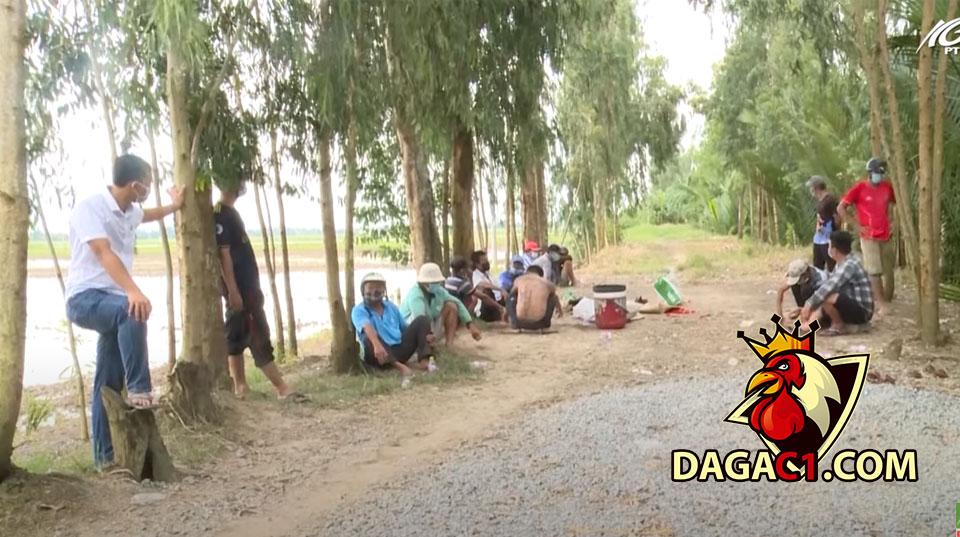 Công an huyện U Minh Thượng triệt xóa tụ điểm đá gà ăn tiên trong mùa dịch 21/9/2021 - DAGAC1.COM - Đá gà trực tiếp
