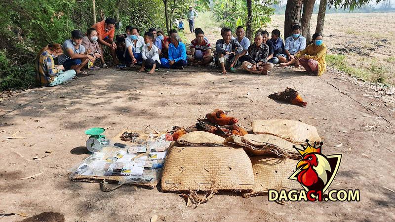 dagac1-bat-22-doi-tuong-da-ga-an-tien-2-10