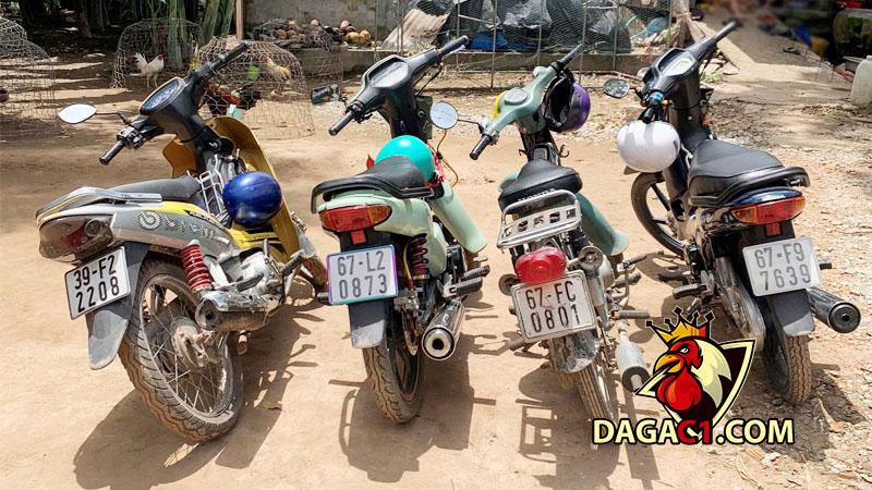 mat-phuc-bat-da-ga-dagac1